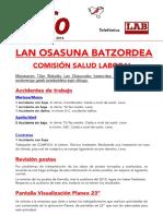 INFO-Lan Osasuna Maiatza 2016 (3) (1)
