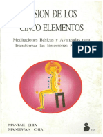 Fusion de Los Cinco Elementos