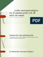 Desarrollo Neuropsicológico en El Adolescente (14-18 Años)