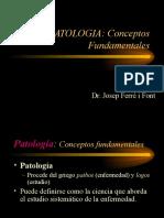 patologia dentomaxilo facial