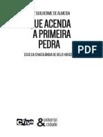 Livro. Que Acenda a Primeira Pedra. Ecos Da Cracolândia de Belo Horizonte - Autor. Luiz Guilherme de Almeida