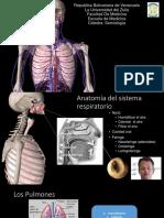 Evaluación y semiología del sistema respiratorio (1).pdf