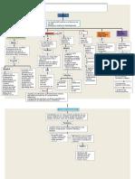 Mapa Conceptual Tanatologia.