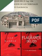 Ratio Legis Del D.leg. 1194 e Implementación de Los Tribunales de Flagrancia en El Perú - Bonifacio Meneses