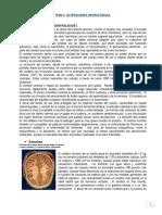 TEMA 3 - Alteraciones Neurológicas