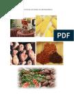 actividadesproductosdelospaisesdecentroamerica-130312091742-phpapp02