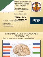 Ecv-Isquemico El Original