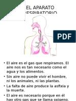 EL APARATO RESPIRATORIO.ppt