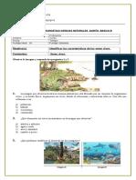 Diagnostico Ciencias 2016 Quinto Basico.doc b