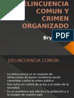 Delincuencia Comun y Crimen Organizado