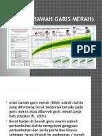 BGM (Bawah Garis Merah)