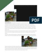 Kala Halaman Rumah Sempit Disulap Jadi Kebun Sayur Dan Budidaya Ikan