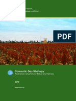 Domestic Gas Strategy