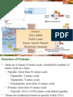 Review Protein Dan Enzim