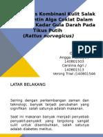 Presentasi PKM