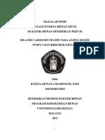 Dilated Cardiomyopathy BOXER- Sirkulasi Ocy