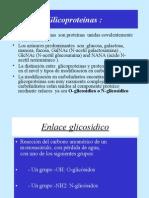 glicoproteinas2