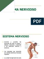CLASE 05 SISTEMA NERVIOSO (1).pdf