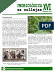 Rockrose Ecoturismo-Hoja Etnobiologica 16 Collejas
