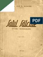 Monografia Satului Salciile 3