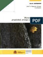 Jose A Piqueras Arenas comp Bienes comunales propiedad arraigo y apropiación.pdf