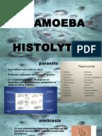 presentacion emtamoeba