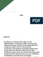 AML Power Point' 14