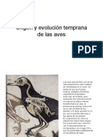 aves-low-res.pdf
