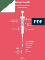 Mesoterapia Homeopática - Infográfico