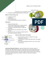 lysosome study guide