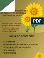 Flavanoides-girasol-resultados