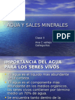 AGUA Y SALES MINERALES.ppt