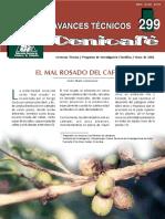 Mal_Rosado.pdf