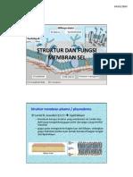 Struktur Dan Fungsi Membran Sel