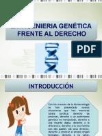 La Ingenieria Genetica