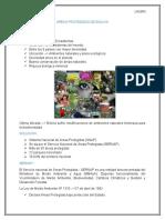 AREAS PROTEGIDAS Efrain Informe Real 2016
