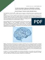 45809748-perceptions-illusoires-de-son-propre-corps-par-stimulation-corticale