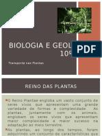 8 Transporte Plantas15 16