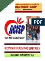 256334050-NECESIDADES-EDUCATIVAS-ESPECIALES.pdf