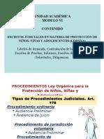 CONTESTACIÓN - PRUEBAS - RECURSOS LOPNNA - 2007.ppt