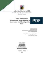 Tesis de Grado Paleoturismo Feg589a