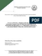 Evaluación de La Producción de Orégano en Dos Localidades en Higueras N. L. e Identificación de La Capacidad Productora de Aceites Esenciales