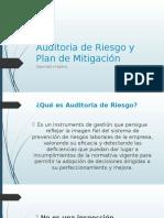 Auditoria de Riesgo y Plan de Mitigación