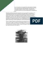 Historia del Basquetball