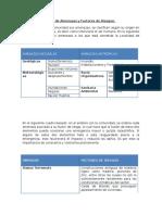 Ejemplo Para La Identificación y Evaluación de Amenaza y Vulnerabilidad
