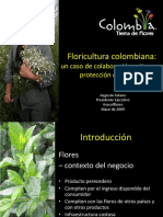 floricultura colombiana