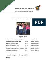 REPORTE-DE-ALQUINOS-EQUPO-4docx.docx