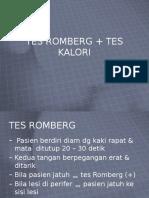 TES ROMBERG+TES KALORI