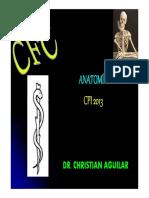 1cfc - Abdomen y Pelvis