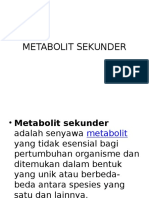 bahan kuliah metabolit sekunder.ppt